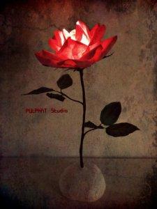 Rose Lamp red 和紙の薔薇の灯り 2018