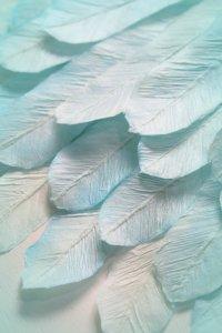 和紙の羽根 Feather of japanesepaper