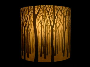 『白神の森』 師匠作品